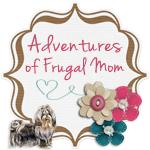 Adventures of a Frugal Mom Cary summer camps