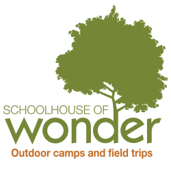 Cary summer camps Schoolhouse of Wonder